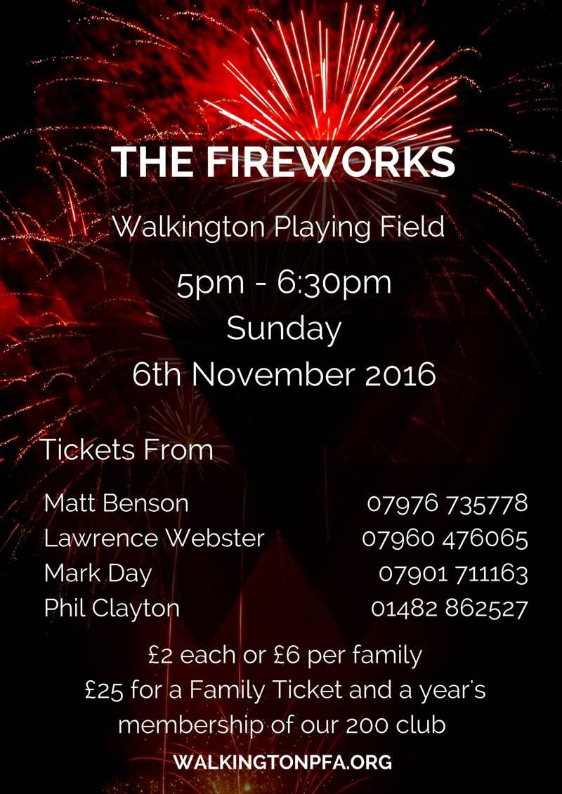 Walkington Fireworks
